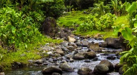 He'eia Stream Restoration